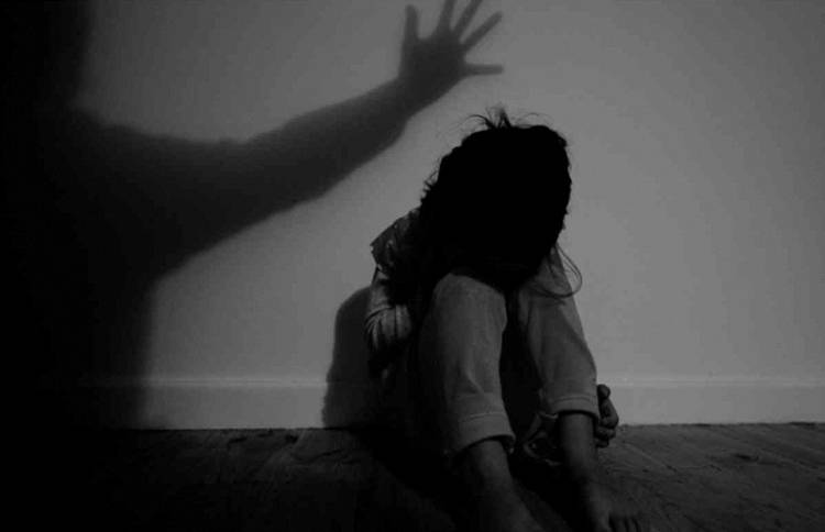 Police investigate case of 9-year-old molested by brothers