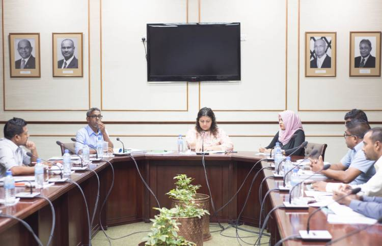 "2020 state budget has ""great prospects"" for gender ministry: committee"